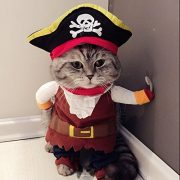 IdepetTM-New-Funny-Pet-Clothes-Caribbean-Pirate-Dog-Cat-Costume-Suit-Corsair-Dressing-up-Party-Apparel-Clothing-for-Cat-Dog-Plus-Hat-M-0