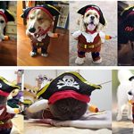 IdepetTM-New-Funny-Pet-Clothes-Caribbean-Pirate-Dog-Cat-Costume-Suit-Corsair-Dressing-up-Party-Apparel-Clothing-for-Cat-Dog-Plus-Hat-M-0-3