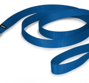 PetSafe-Nylon-Leash-1-x-6-Royal-Blue-0