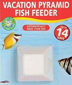 API-VACATION-PYRAMID-FISH-FEEEDER-Aquarium-Block-Feeder-For-Fish-1-count-0