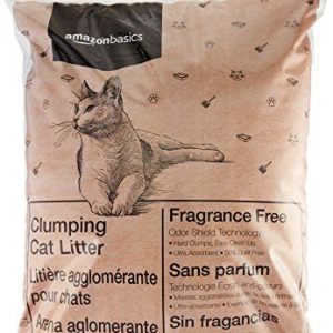 AmazonBasics-Clumping-Cat-Litter-40-lb-Bag-0