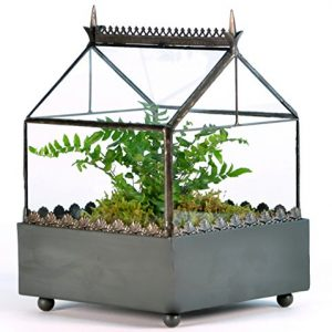 H-Potter-Square-Glass-Plant-Terrarium-Gothic-Style-Planter-Box-WAR147-0