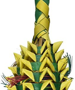 Planet-Pleasures-Pineapple-Foraging-Toy-Small-0